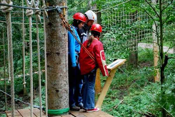 Alle klimbossen en klimparken in Nederland en Vlaanderen