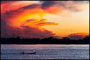 Amazone in Zuid-Amerika