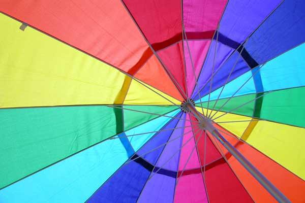 In welke landen is het homohuwelijk toegestaan