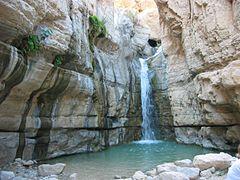 Nahal Arugot in Israel