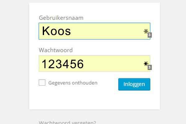 Wat zijn de meest gebruikte wachtwoorden? Een top 25