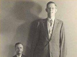 Langste mannen ter wereld ooit