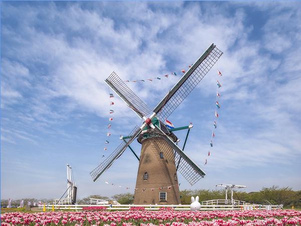 Nederlanders weten niets van hun eigen land