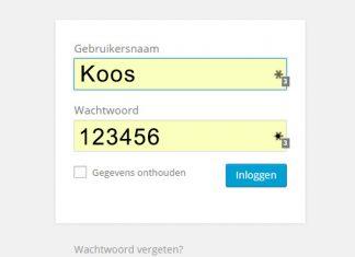 Meest gebruikte Nederlandse wachtwoorden