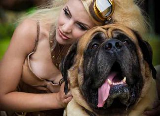 Op zoek naar een date? Neem een hond!