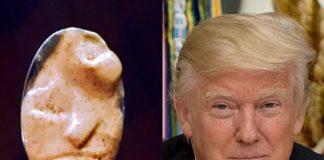 Lookalikes van Donald Trump, een overzicht