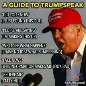 Donald Trump - Taal