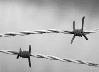 Holocaust overlevenden worden ouder, maar zijn ongezonder
