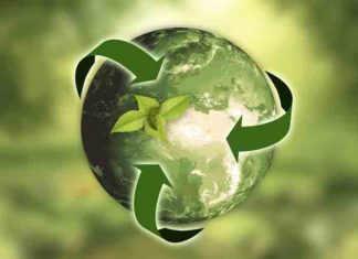 Meest innovatieve bedrijven duurzaamheid en milieutechnologie ter wereld 2019