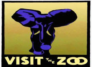 Top 10 Populairste dierentuinen van Nederland 2019