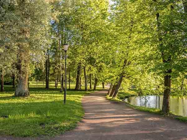 Meeste park per inwoner in Nederland