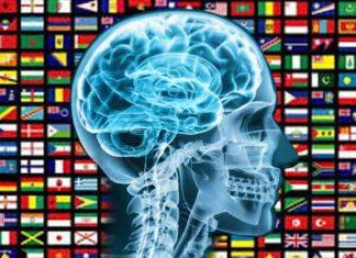Gemiddeld IQ per land