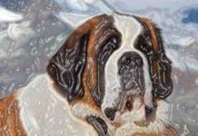 Honden liegen tegen baasje
