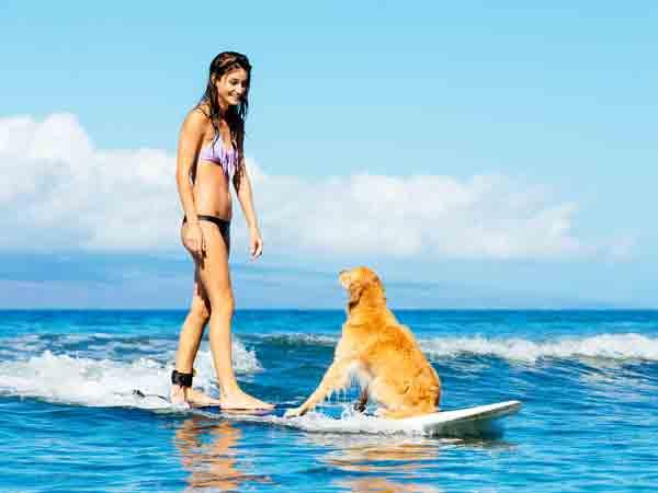 Mensen met honden gezonder en goed voor je hart