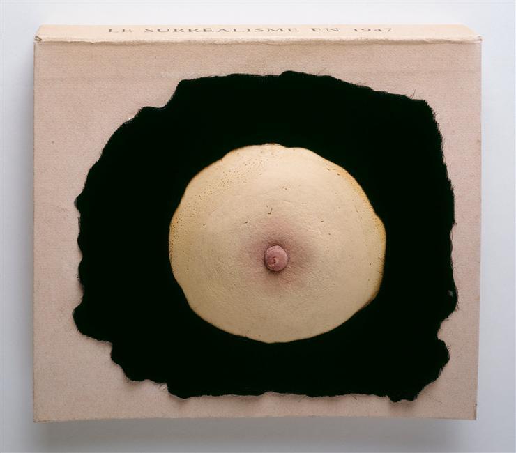 Prière de Toucher / Aanraken alstublieft (1947) - Marcel Duchamp