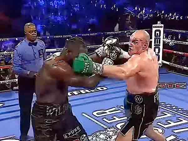 Beste bokser in het zwaargewicht 2020