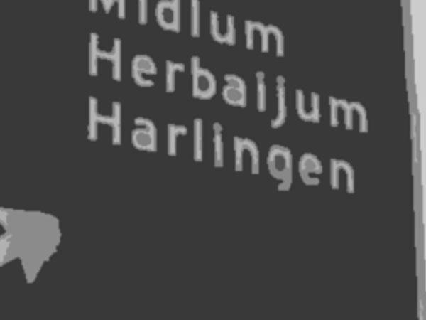 Kansarmste gemeente van Nederland en de kansrijkste – Top 10