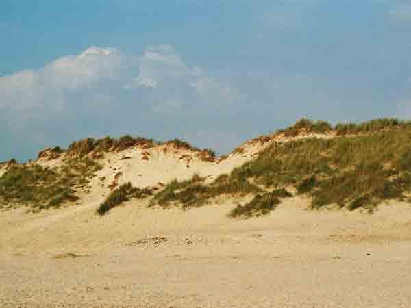 Nederlanders het gelukkigst in de duinen,