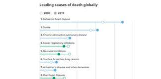 Belangrijkste doodsoorzaken wereldwijd 2019