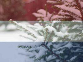 Wanneer was er een witte kerst in Nederland?