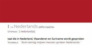 Meest gesproken talen in Nederland