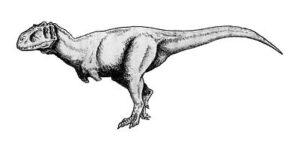 Rajasaurus Narmadensis