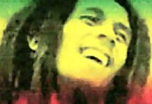 Top 100 beste Reggae nummers aller tijden