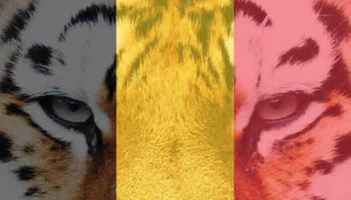 Top 10 leukste dierentuinen van België
